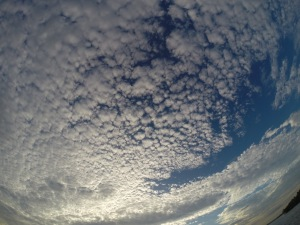 The Florida Sky