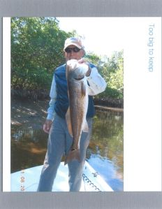 Chuck Sheley Works Over Tidal Creek Redfish
